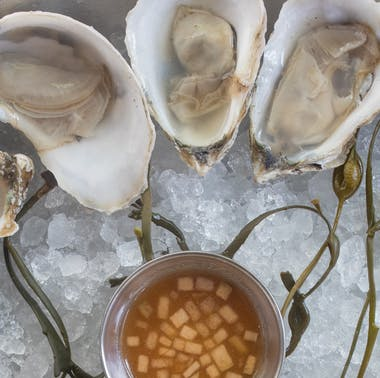Where To Go When You Just Want Some Oysters