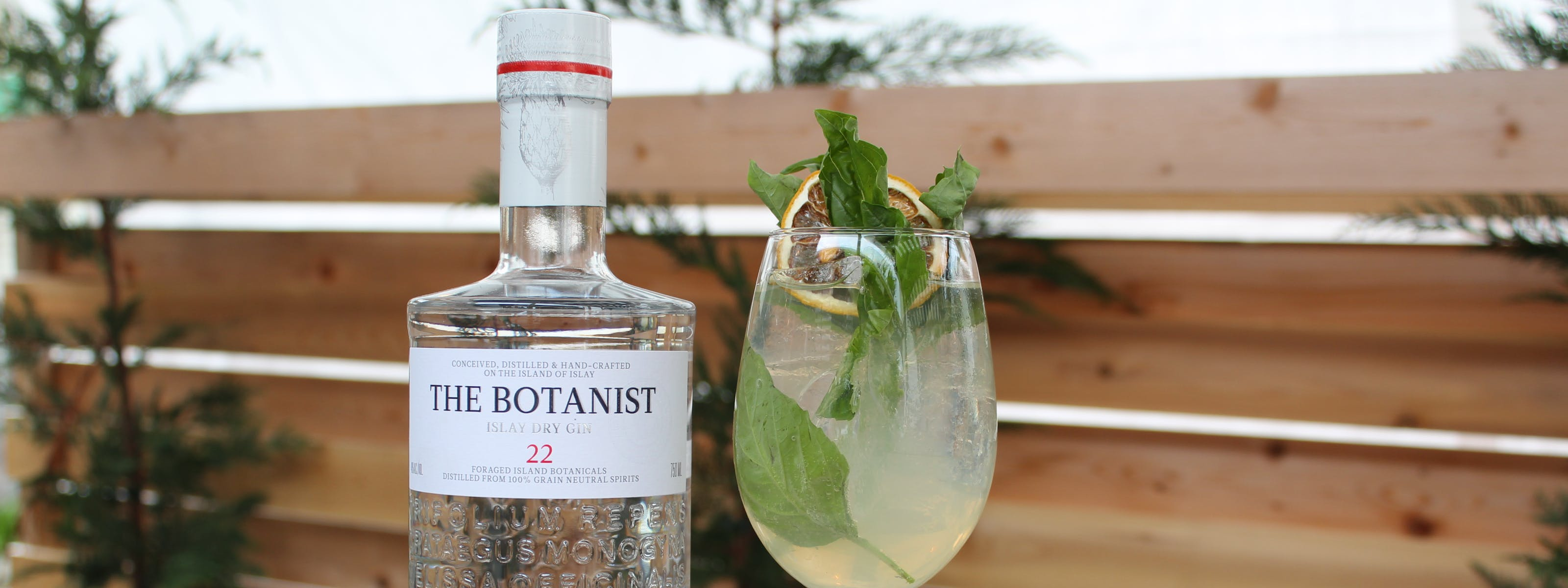 Where To Get A G&T And Give Back In Seattle - Seattle - The Infatuation