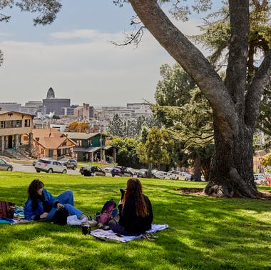 The Best Picnic Spots In LA