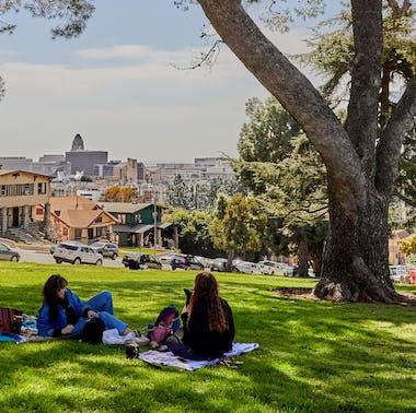 The Best Picnic Spots In LA