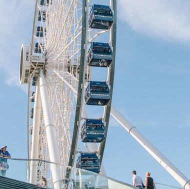The Navy Pier Survival Guide
