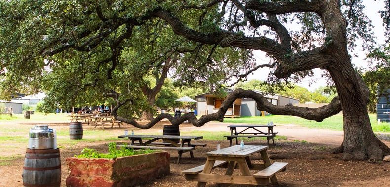 Where To Eat And Drink In Dripping Springs